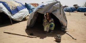 Erik Orsenna : Alerte dans tout le Sahel!