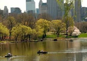 Havres de paix dans Central Park, le poumon de New York