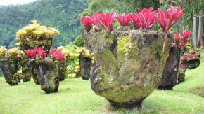 Martinique : Le jardin tropical deBalata