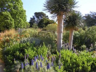 Jardin---Decouvrir-les-jardins4cc179ed1ff9c