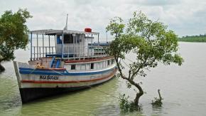 Bengale : Les Sundarbans sont en train dedisparaître