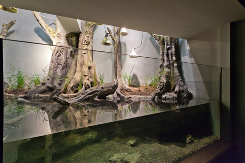 Vivarium-Europe-Laurent-BLOSSIER