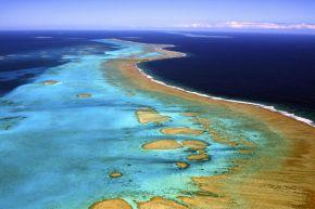 Nouvelle Calédonie : La France crée l'une des plus importantes aires marines protégées dumonde