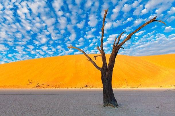 admirez-le-magnifique-desert-de-namibie-grace-a-ces-fantastiques-photographies1