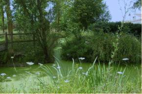 Le marais poitevin retrouve son label de Parc NaturelRégional