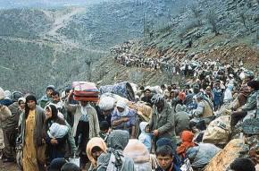 Les Kurdes, portrait degroupes