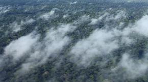 Amazonie : les «fleuves volants» risquent de setarir