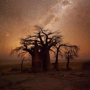 Hougaard Malan : Paysages du sud del'Afrique