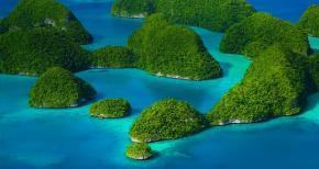 Les îles Chelbached (Palau) : des champignons volcaniques abritent lesrequins