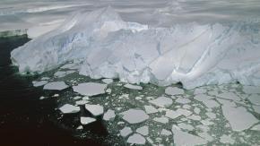L'évolution rapide de la vie complexe, il y a 2,1 milliards d'années, aurait-elle eu un lien avec la toxicité de l'océan?