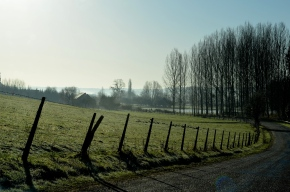 La fertilité des sols, un enjeu majeur du XXIesiècle