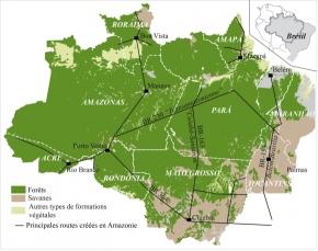 Amazonie : Le Brésil maîtrise-t-il la déforestation?