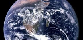 Les écosystèmes de la planète menacés par la perte debiodiversité