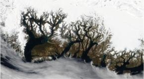 Groenland : La calotte glaciaire date bien de 30 millionsd'années
