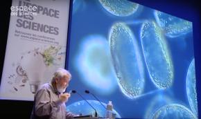 Pierre Mollo : L'océan, l'Homme et leplancton